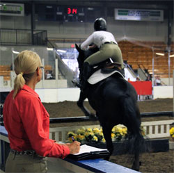 Lindsay Grice Horse Jumping Judge