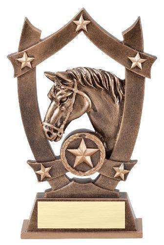 Horse show luck?