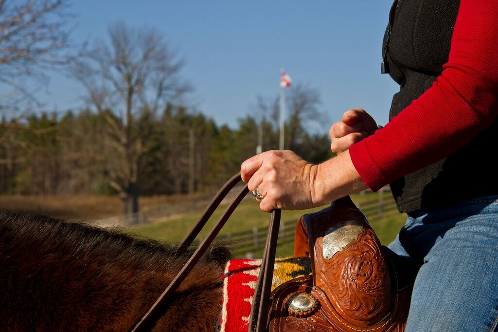 5 top reasons for horse and rider communication gaps.
