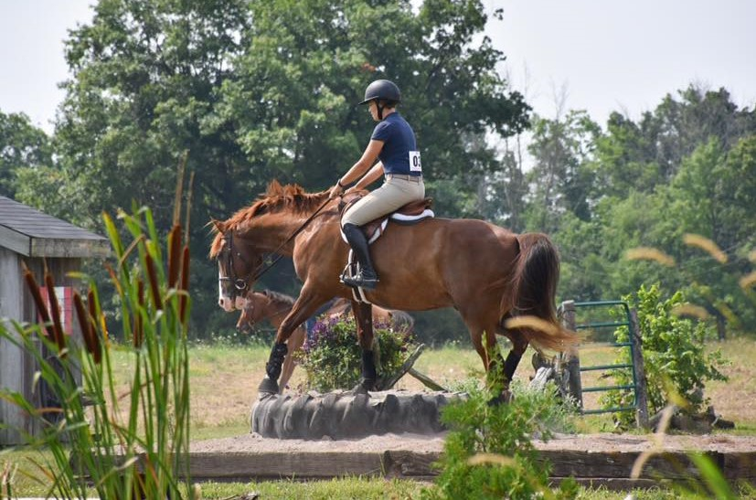 Connecting with your horse through trail obstacle competition!